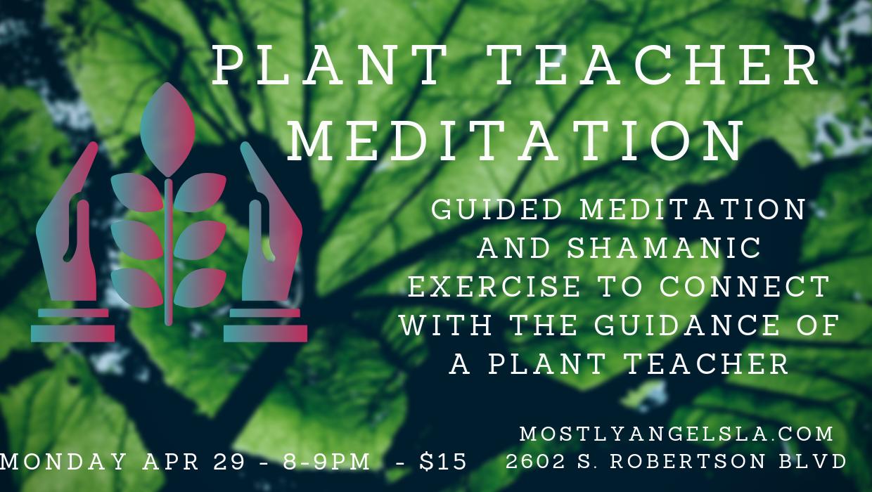 Plant teacher meditation 4-29-19.png