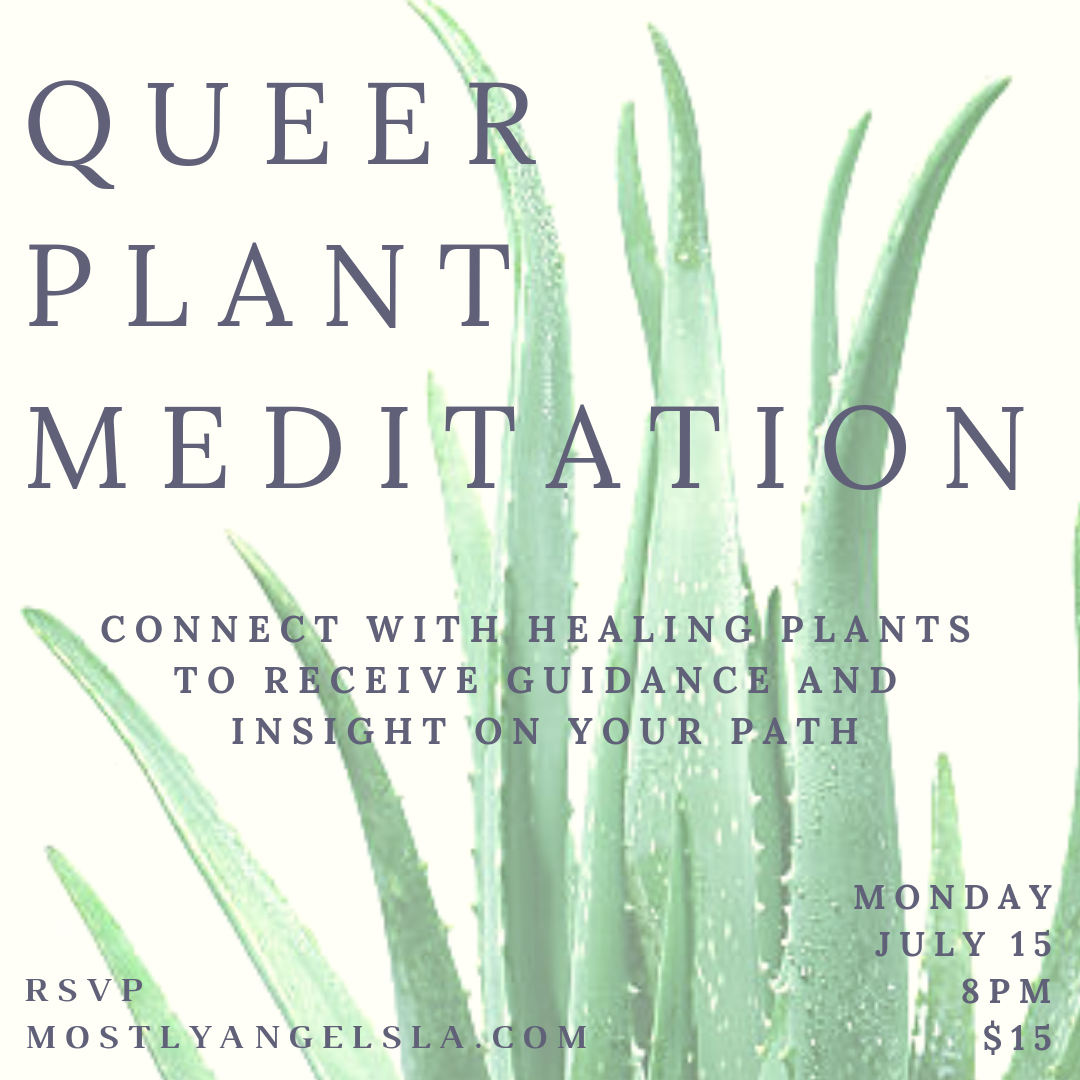JULY 15 Queer Plant Meditation - Jason Perez.png