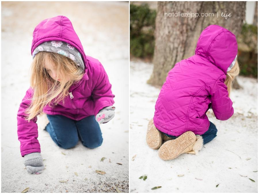 Pensacola snow day 2014