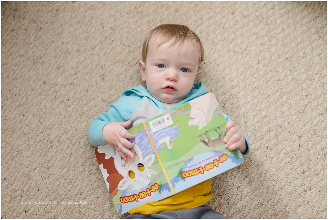 Barnyard book