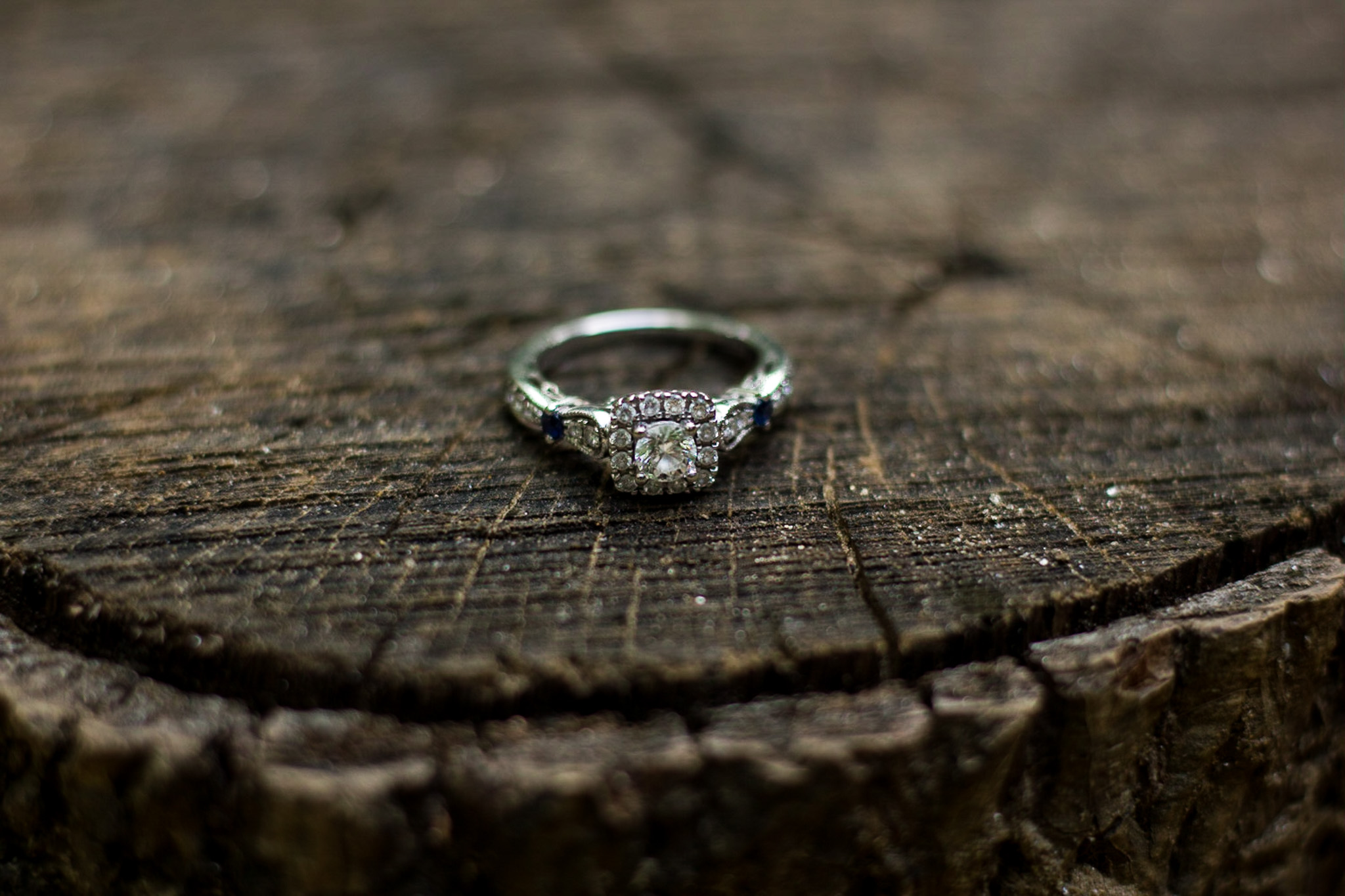 Engagement, Photography, Photographer, Columbia SC, Riverwalk, USC, College Campus, Couple, Engagement Ring, Ring, Wood, Stump, Rustic