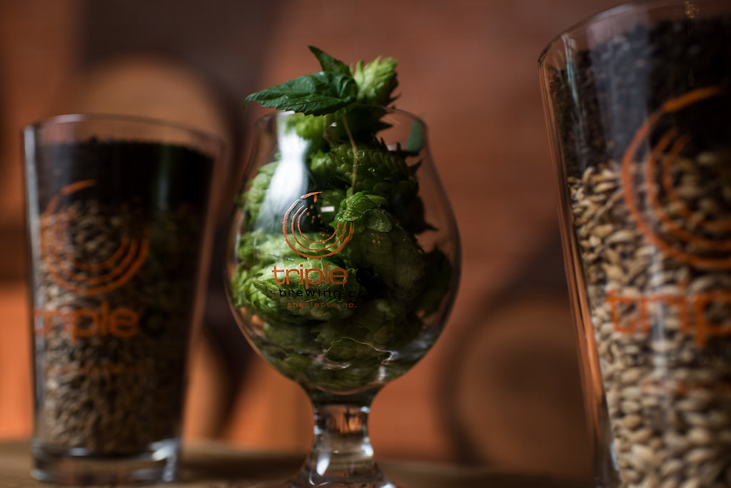 Detail shot of hops and barley in beer glasses,part of a Boho Brewery Wedding Styled Shoot at Triple C Barrel Room in Charlotte NC. Provided by Triple C Brewery.
