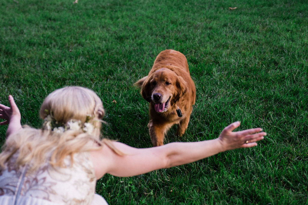 Bride and Dog at St. Patrick Episcopal Church Elopement in Mooresville, NC from Charlotte Wedding Photographer