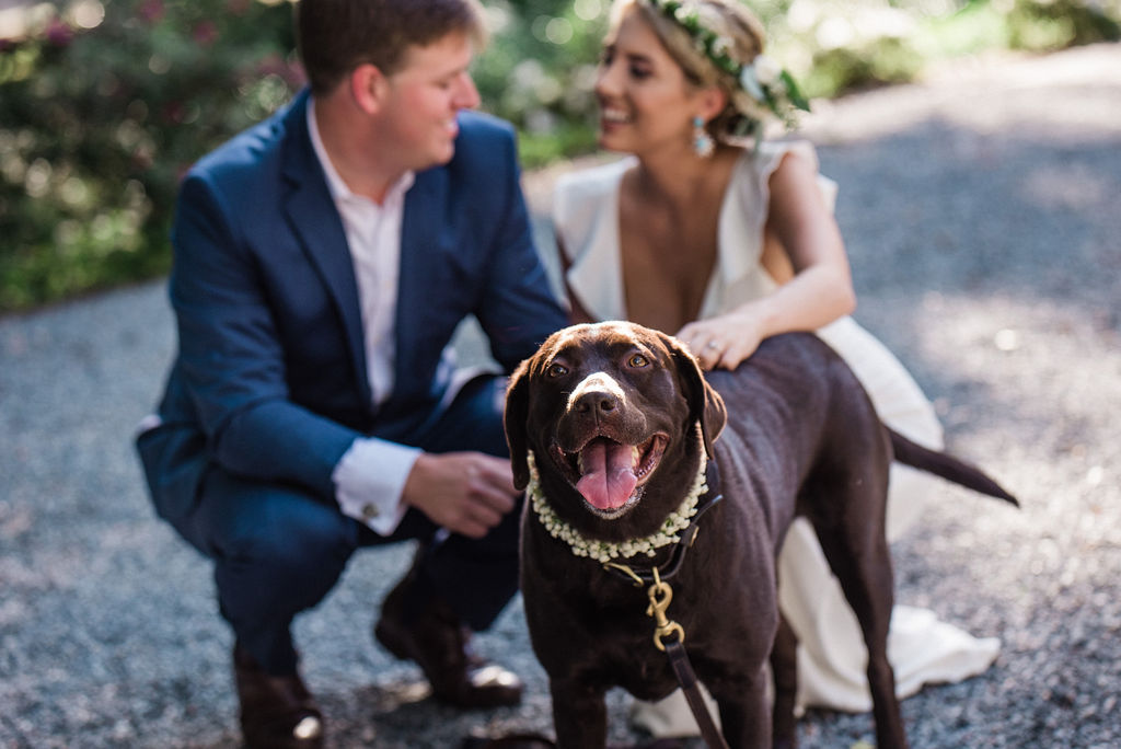 Bride Groom and Dog at Ritchie Hill Venue in Concord NC by Charlotte Wedding Photographers