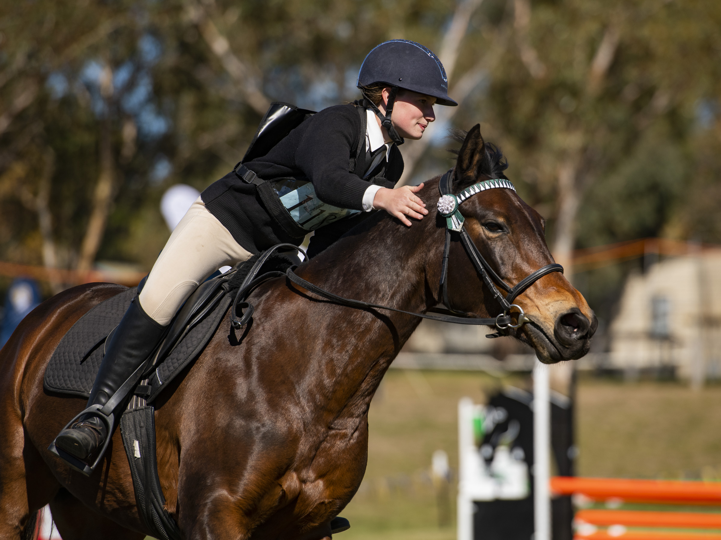 2019 - Day 3 - Image of the Day & Click here for Day 3 Gallery - Click on the above link to see the full gallery of images from Day 3We love to see the love a rider has for their horse after a clear round of a challenging jump course. Congratulations to our Image of the Day winner - image 1395. Please get in touch so we can coordinate your prize.
