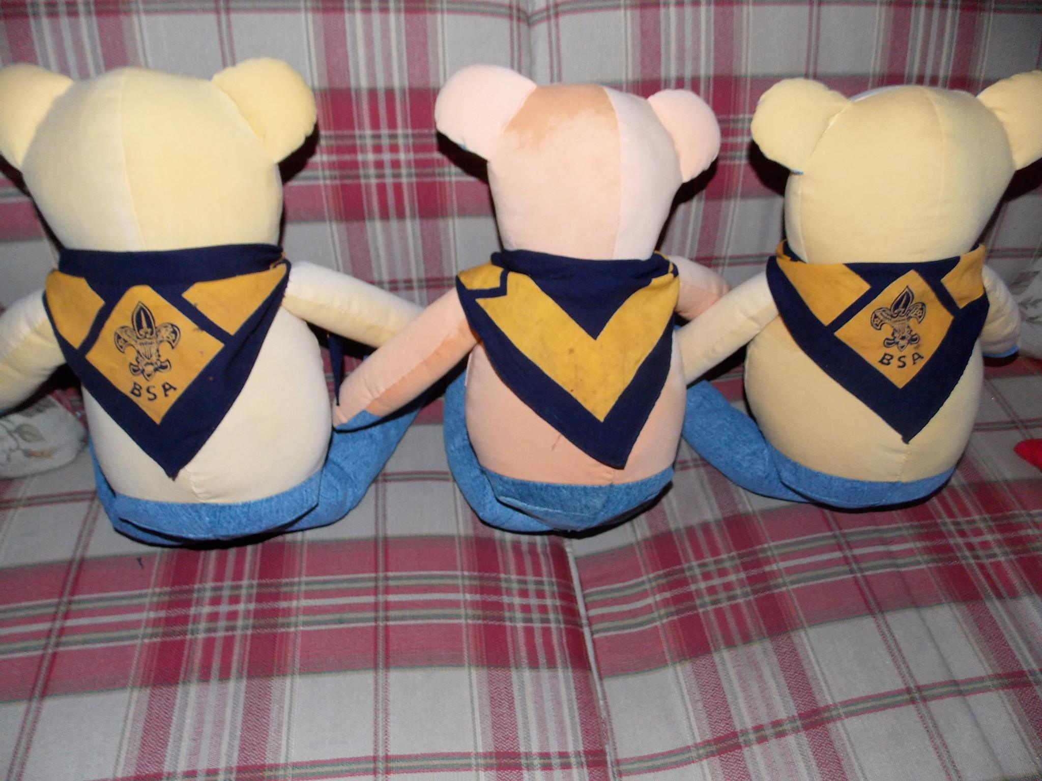 boy scout bears.jpg