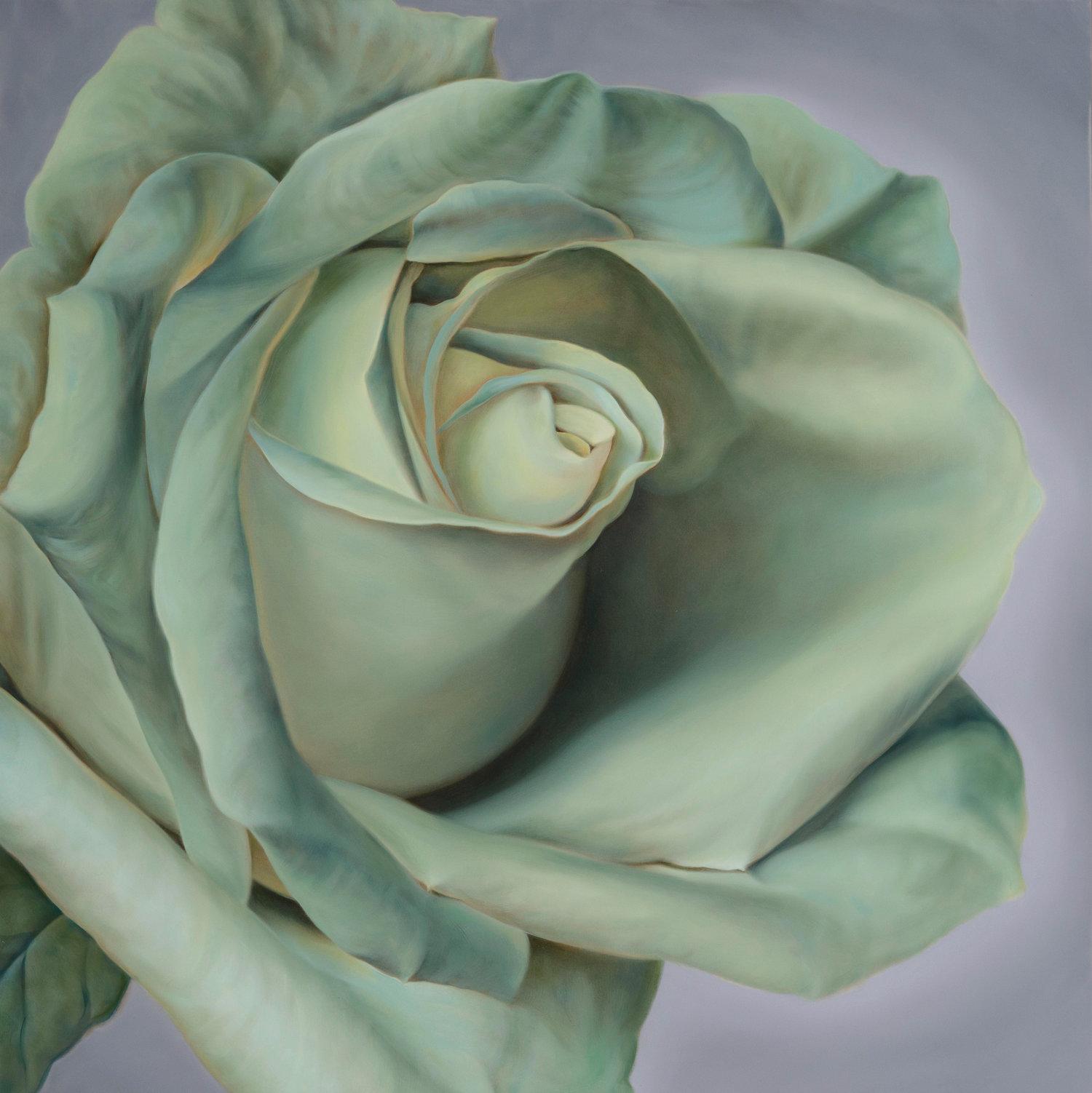 Tinted Rose