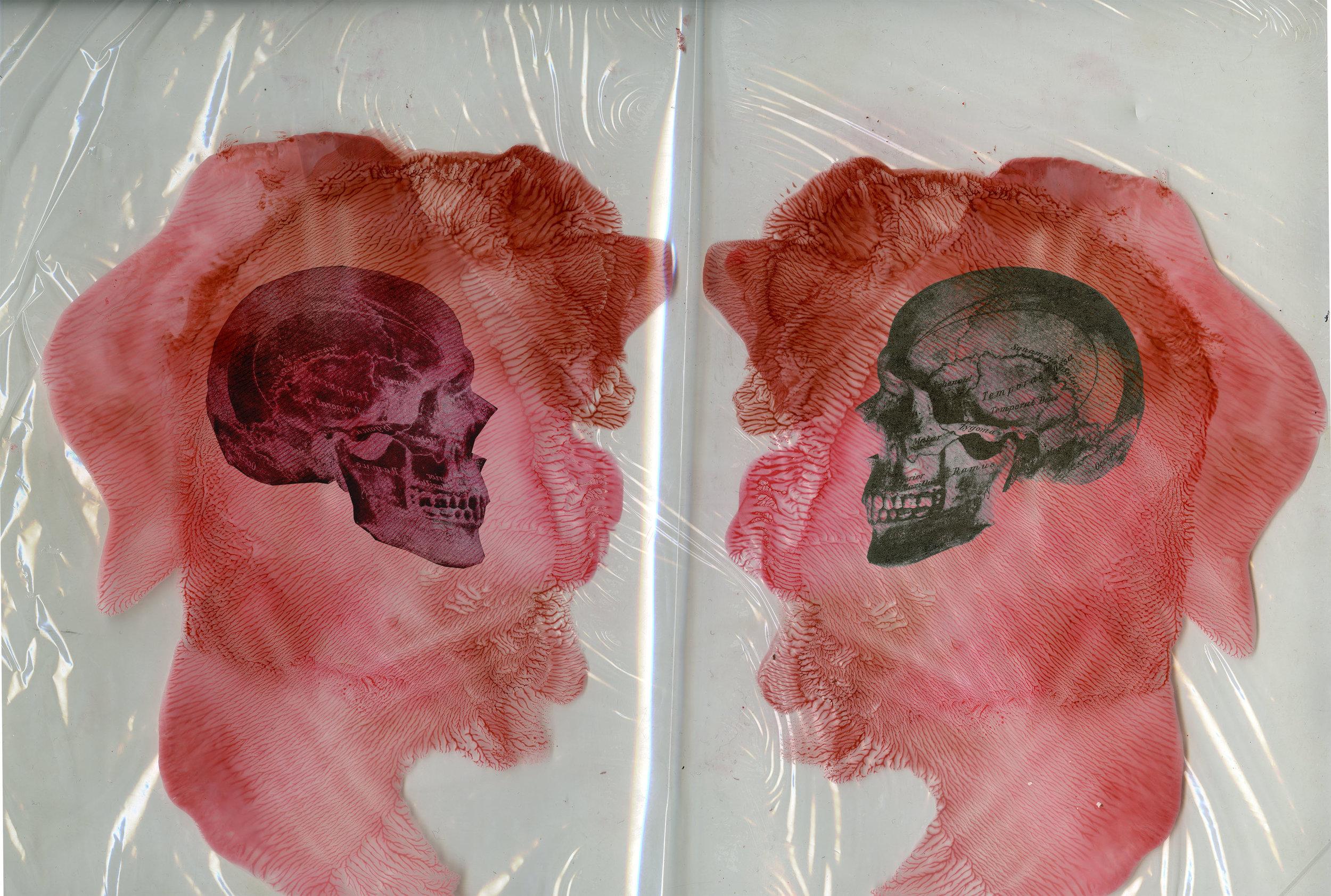 The Skull : Mr. & Ms. Rorschach (2016)