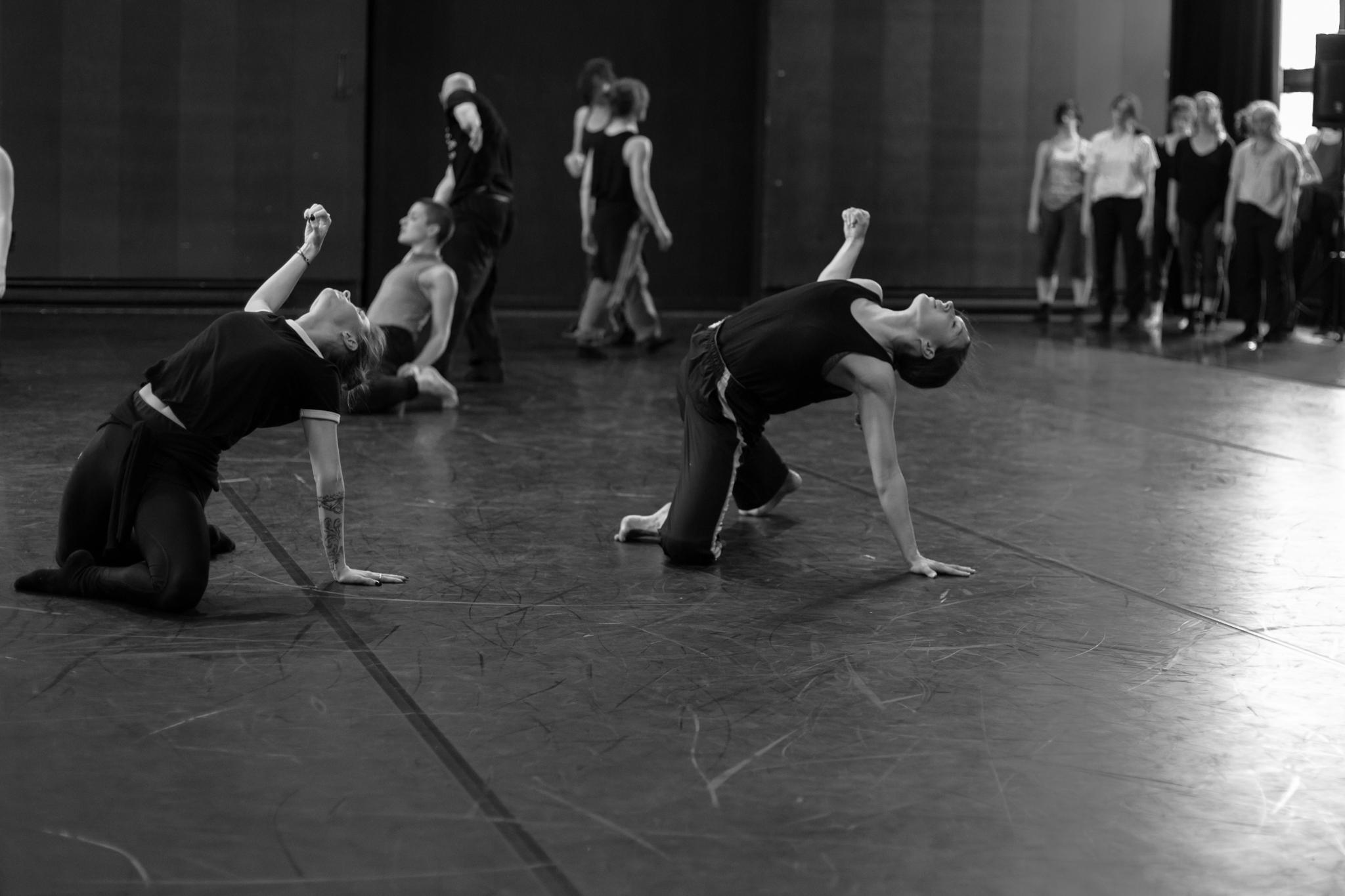 © Anne-Flore de Rochambeau // TransFormation Danse 2017 | Lydia Zimmer, Maïka Giasson