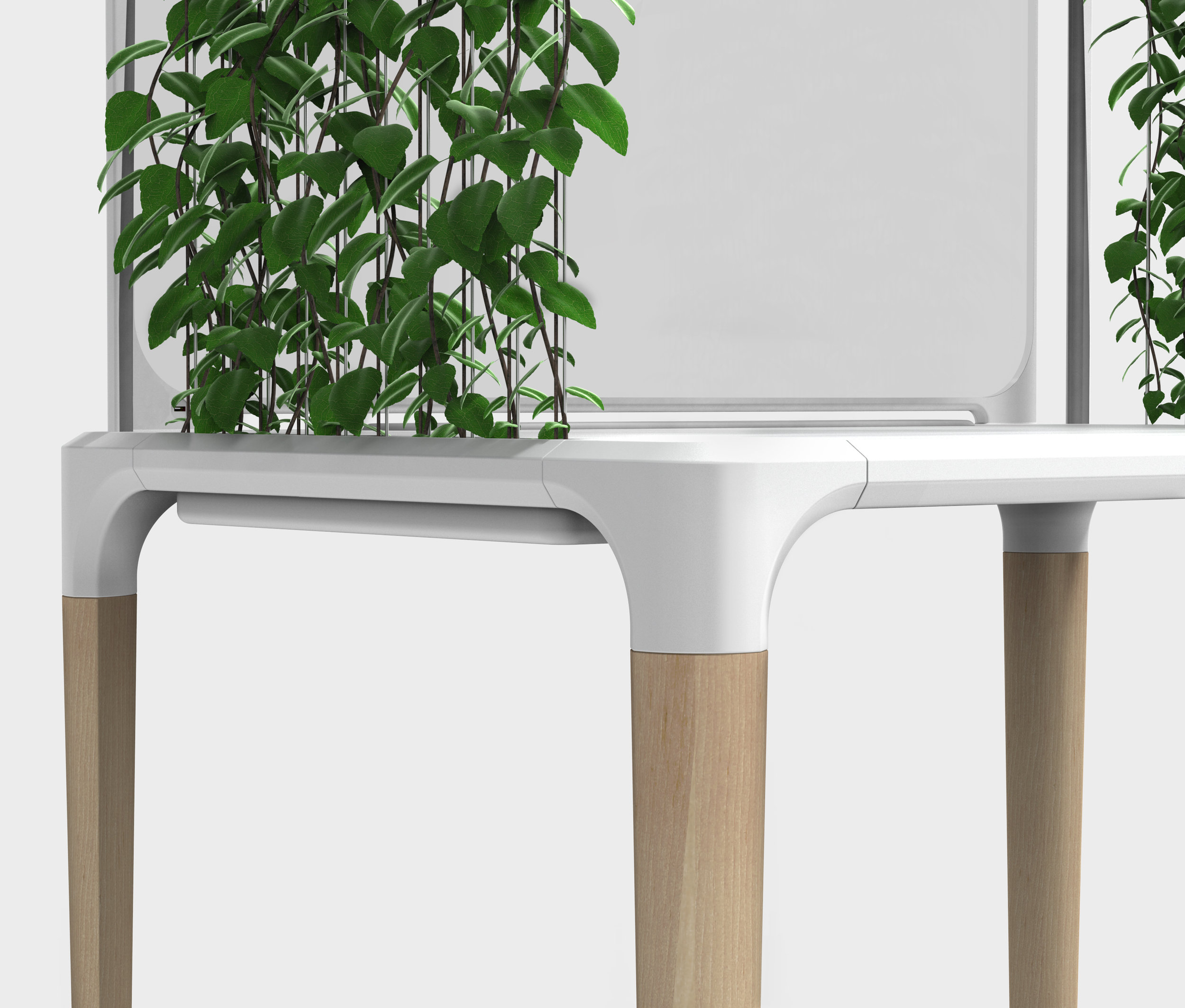 desk with plants.172.jpg