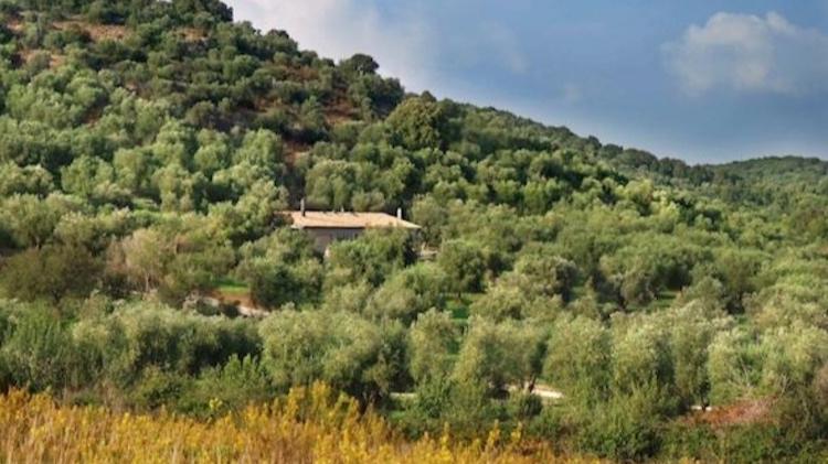 Villa Monteti - Sleeps 8