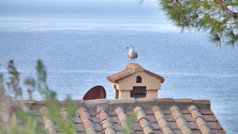 Casetta14.jpg