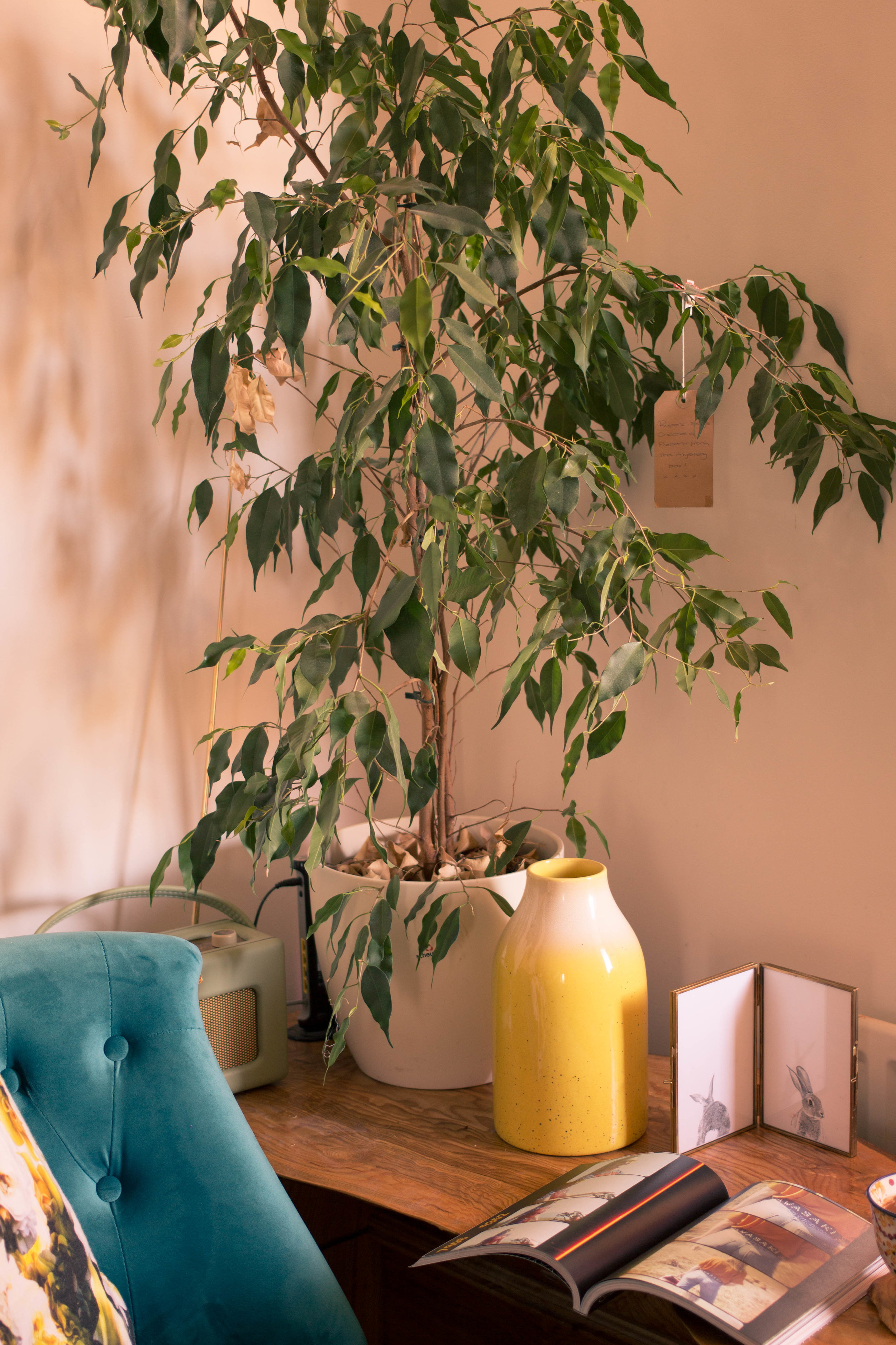 Styling-a-cosy-corner-rush-and-teal-3.jpg