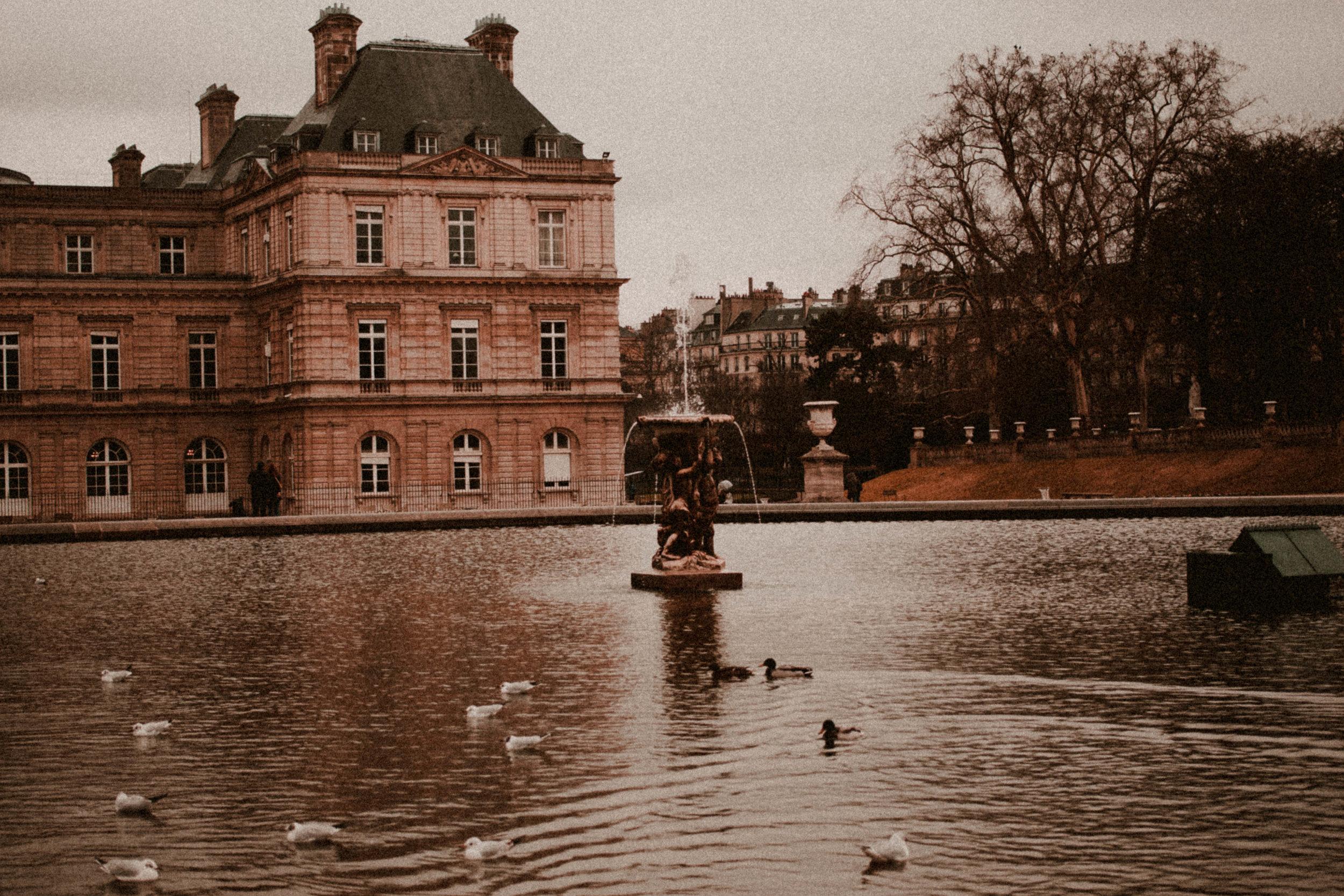 Paris Diary Rush and Teal-13.jpg