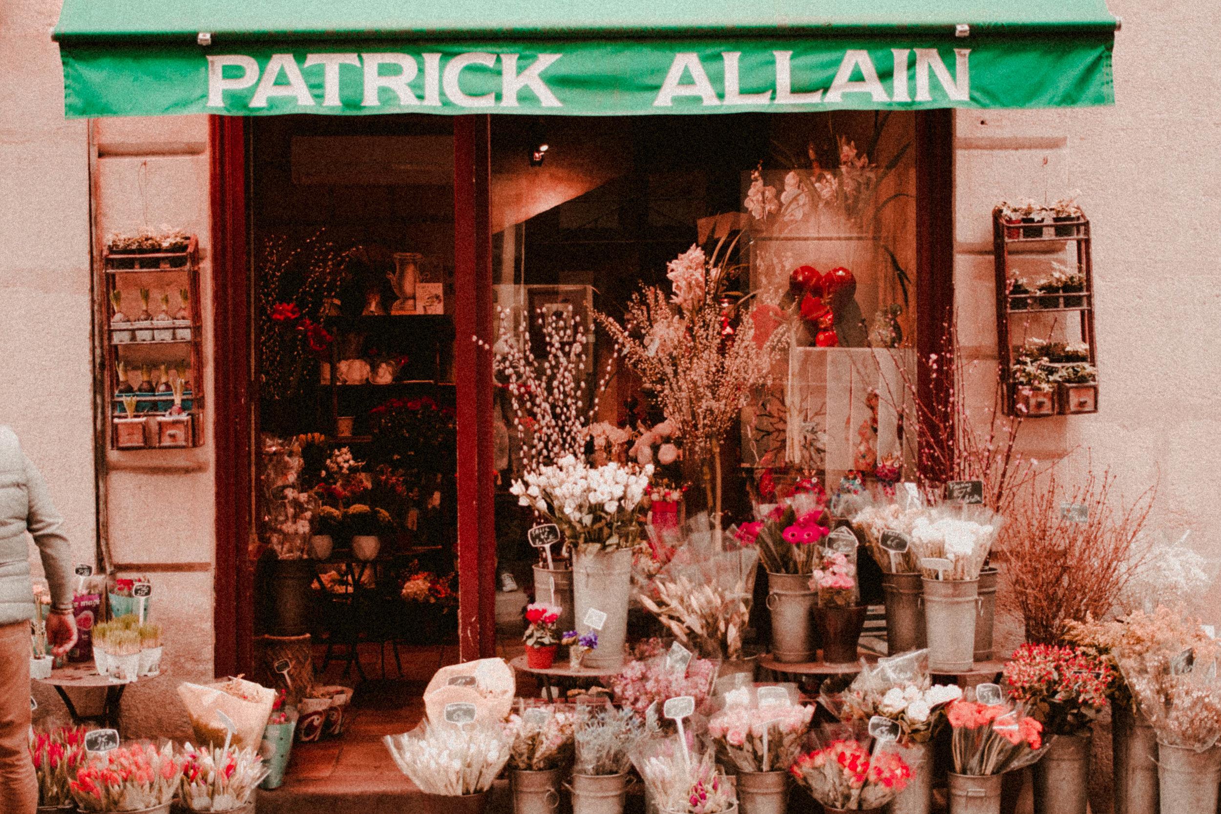 Paris Diary Rush and Teal-14.jpg