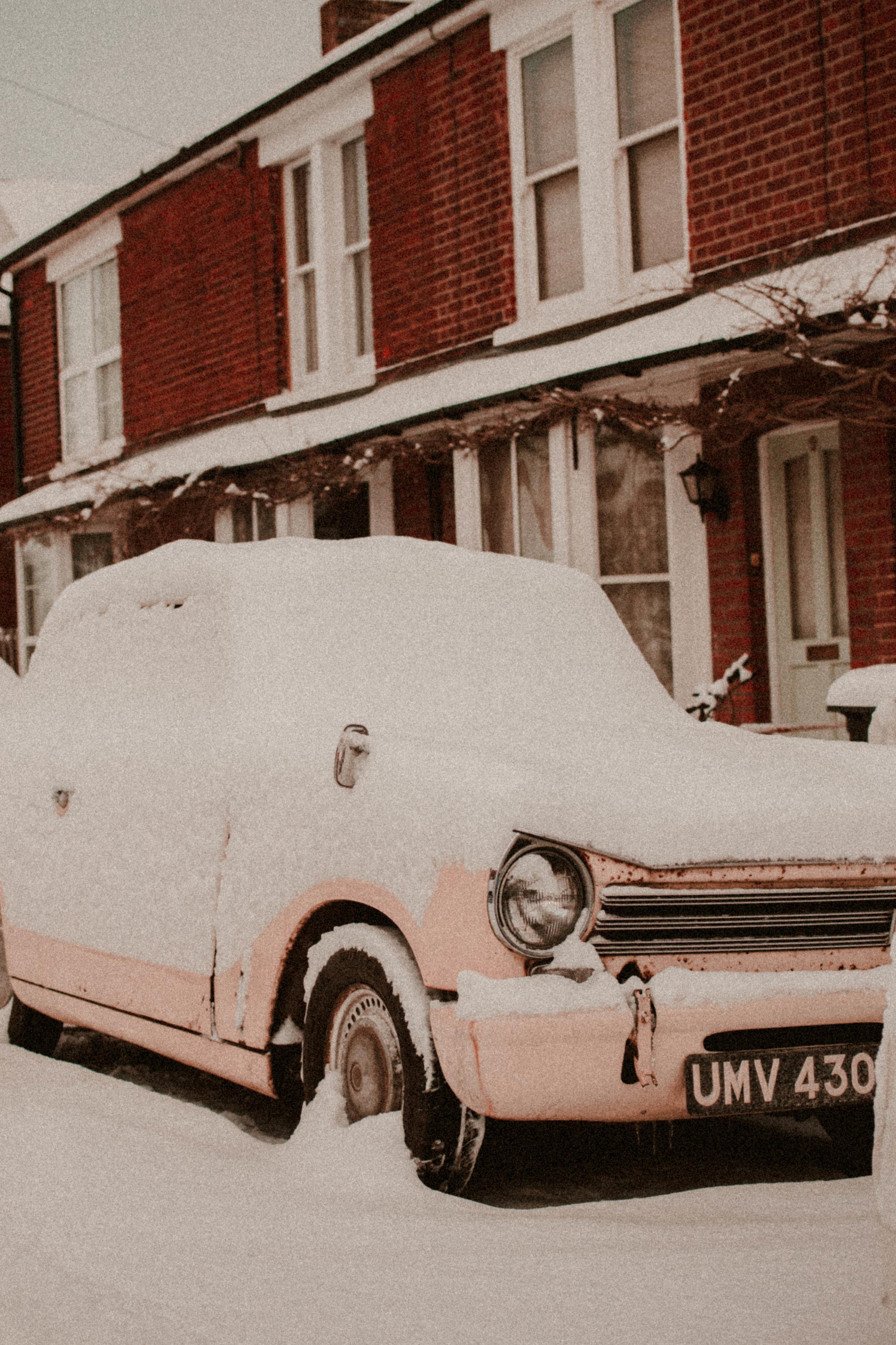 Snow Day Feb Rush and Teal-3.jpg