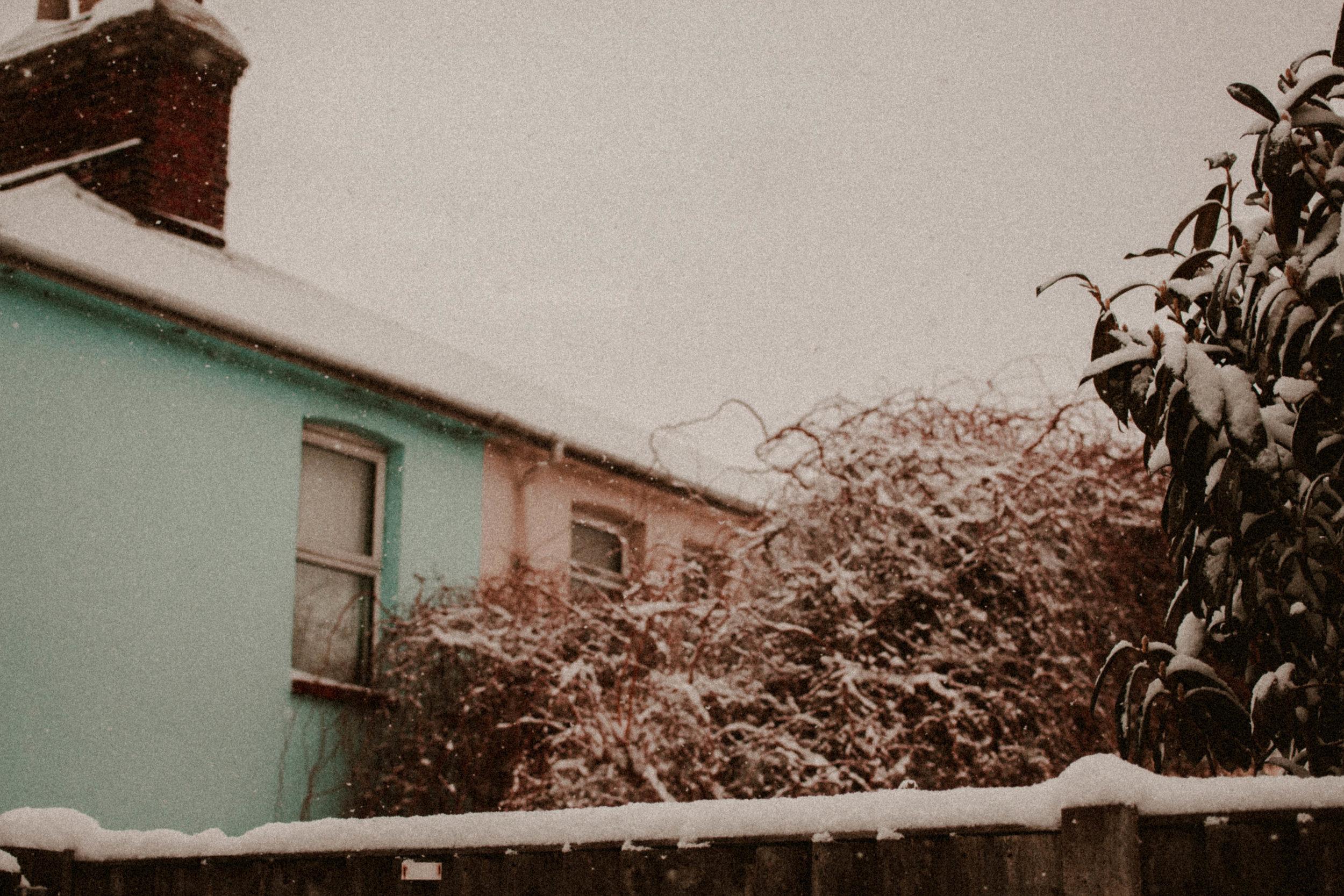 Snow Day Feb Rush and Teal-2.jpg