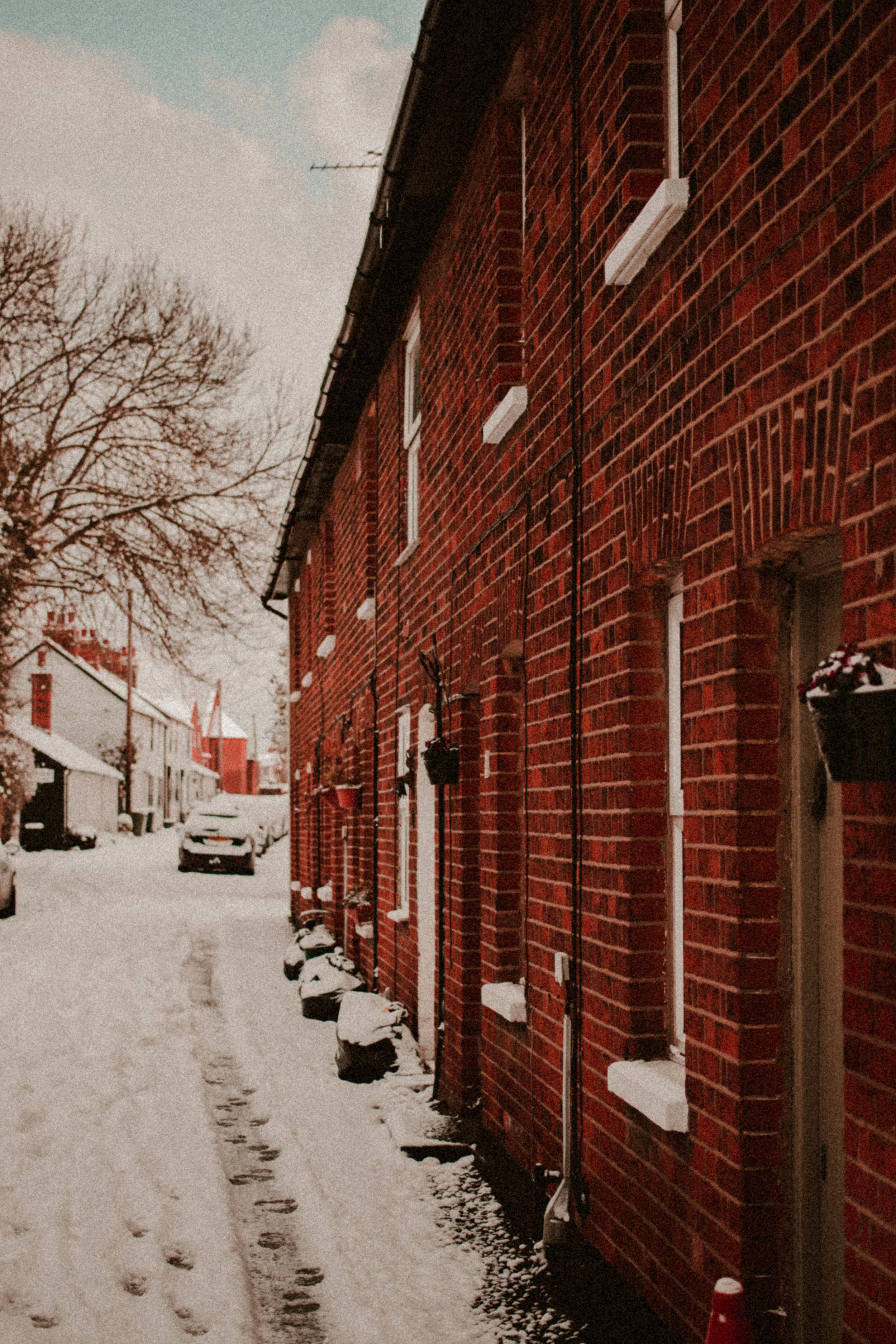 Snow Day Feb Rush and Teal-20.jpg