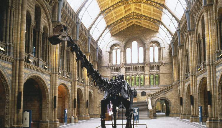 Facilitating business continuity planning for a national museum