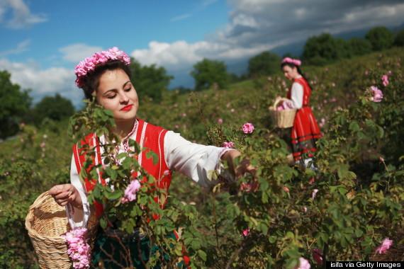 o-ROSE-VALLEY-BULGARIA-570-2.jpg