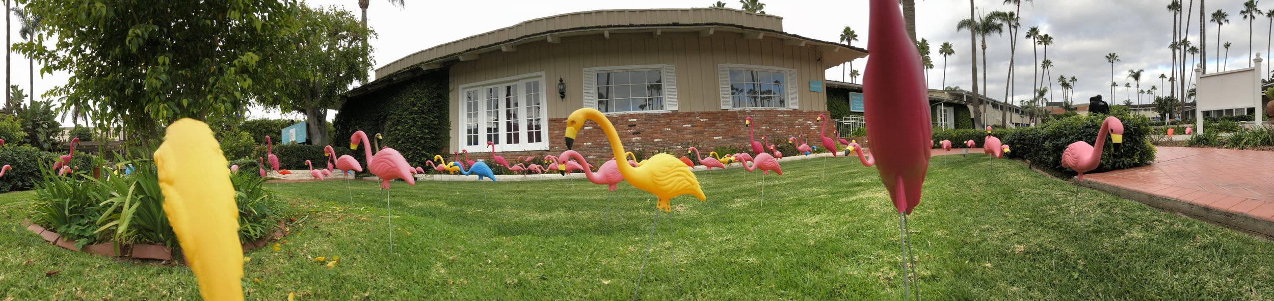 'Flamingo Lawn' relaxed 1950's Californian style Town and country Resort with cheeky touches.