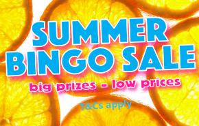 summer sale promo.png