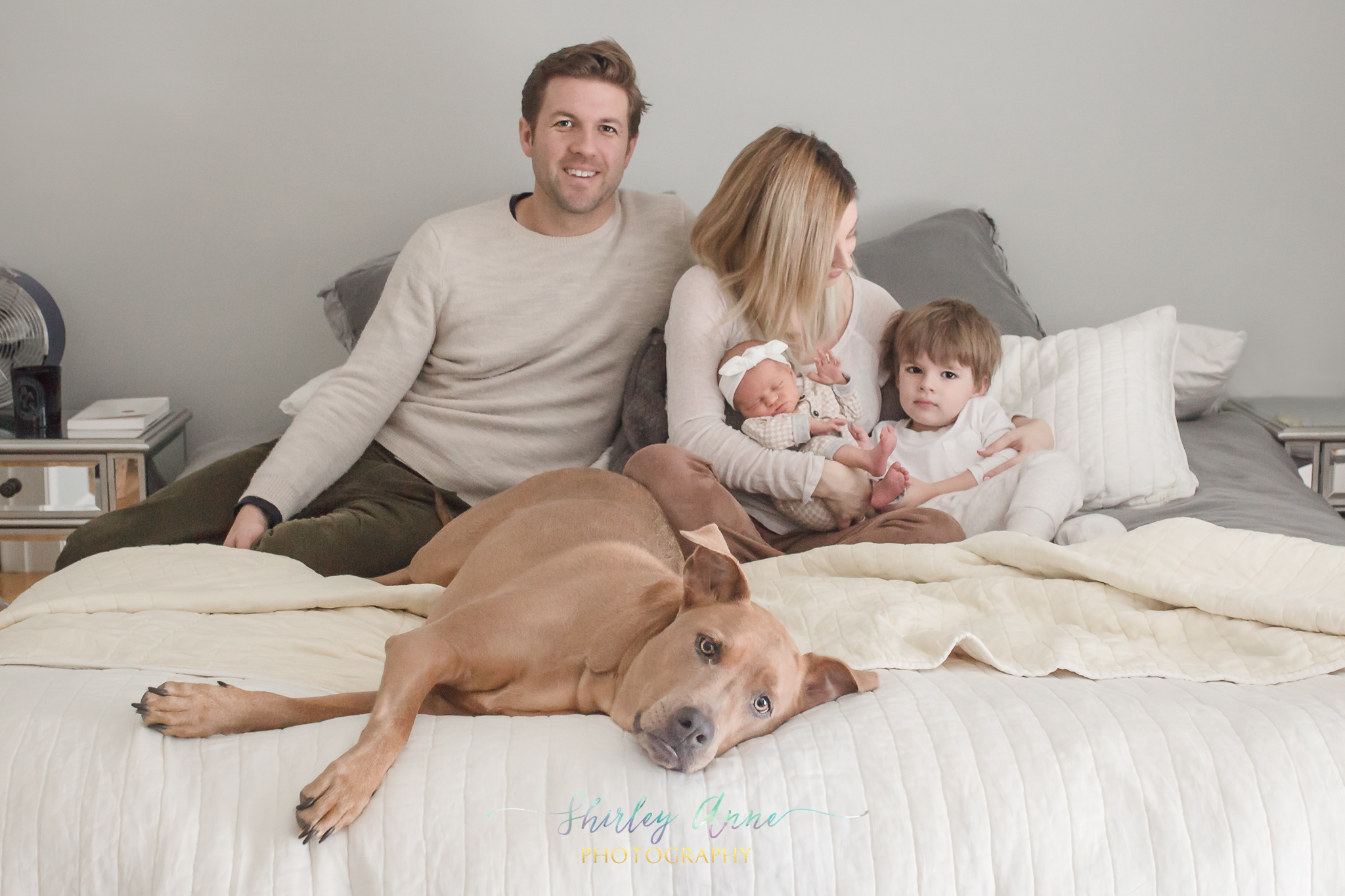 elegant home newborn session with pet