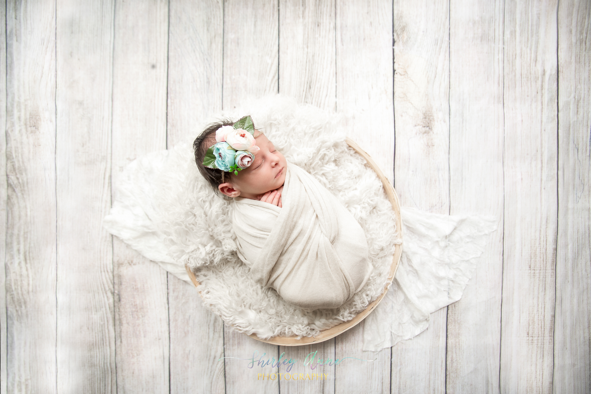 newborn session in home posed photographer