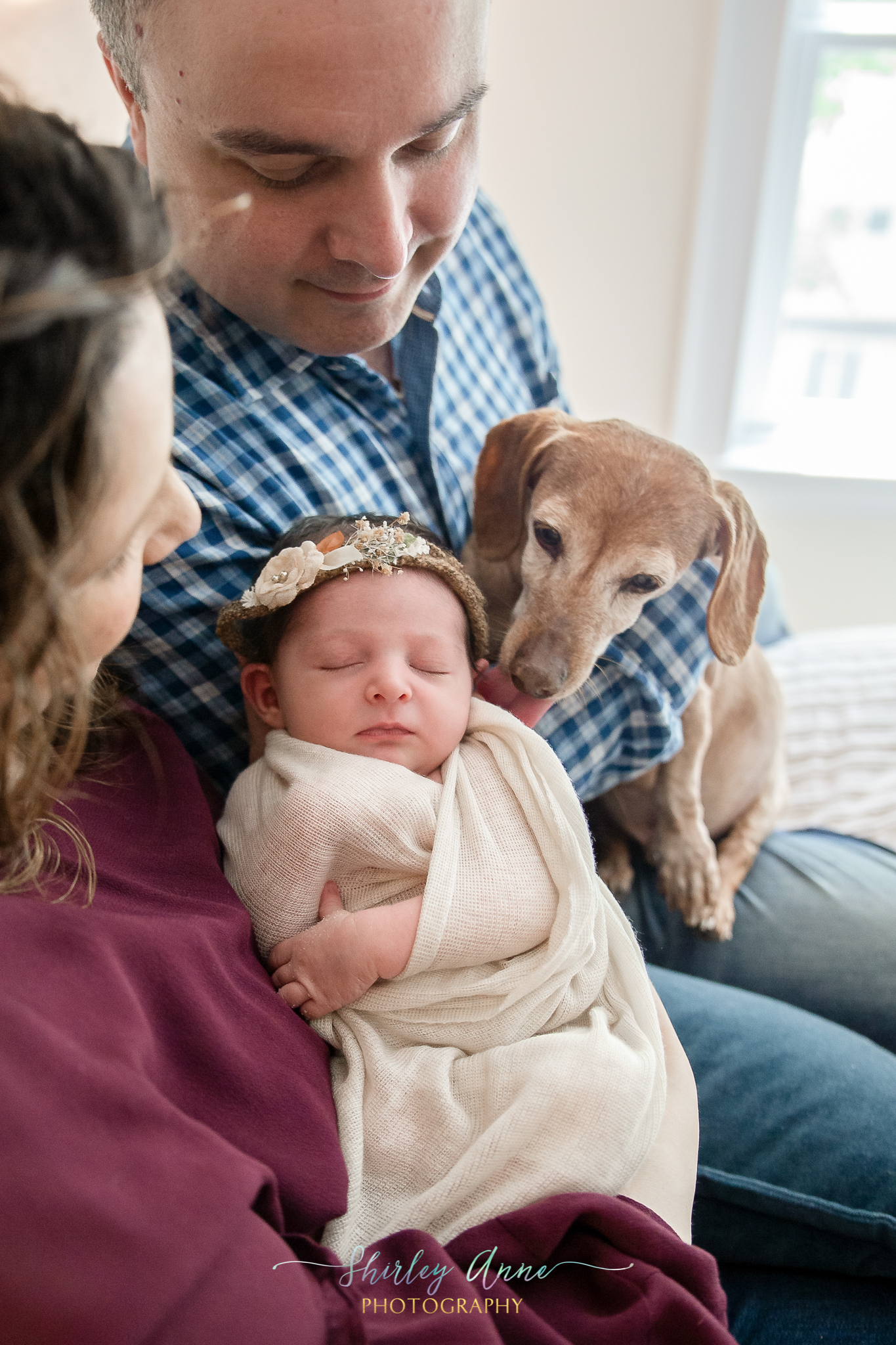 newborn photography family and pet in house needham