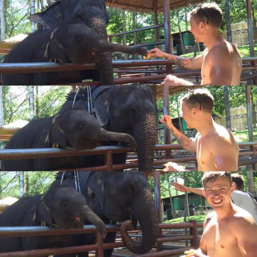 (I have no photos of us shopping so here's James feeding a baby elephant… We decided not to ride them because it can be considered cruel