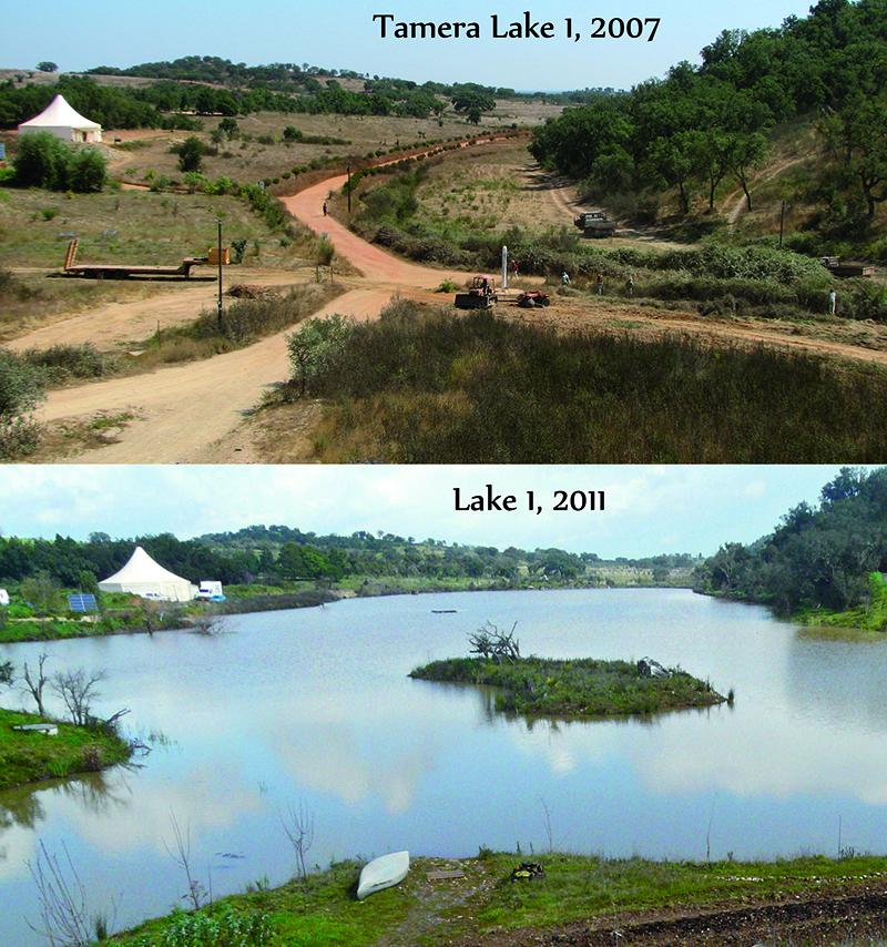 Credits: www.tamera.org