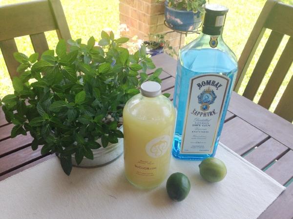 Gin Gin Essentials