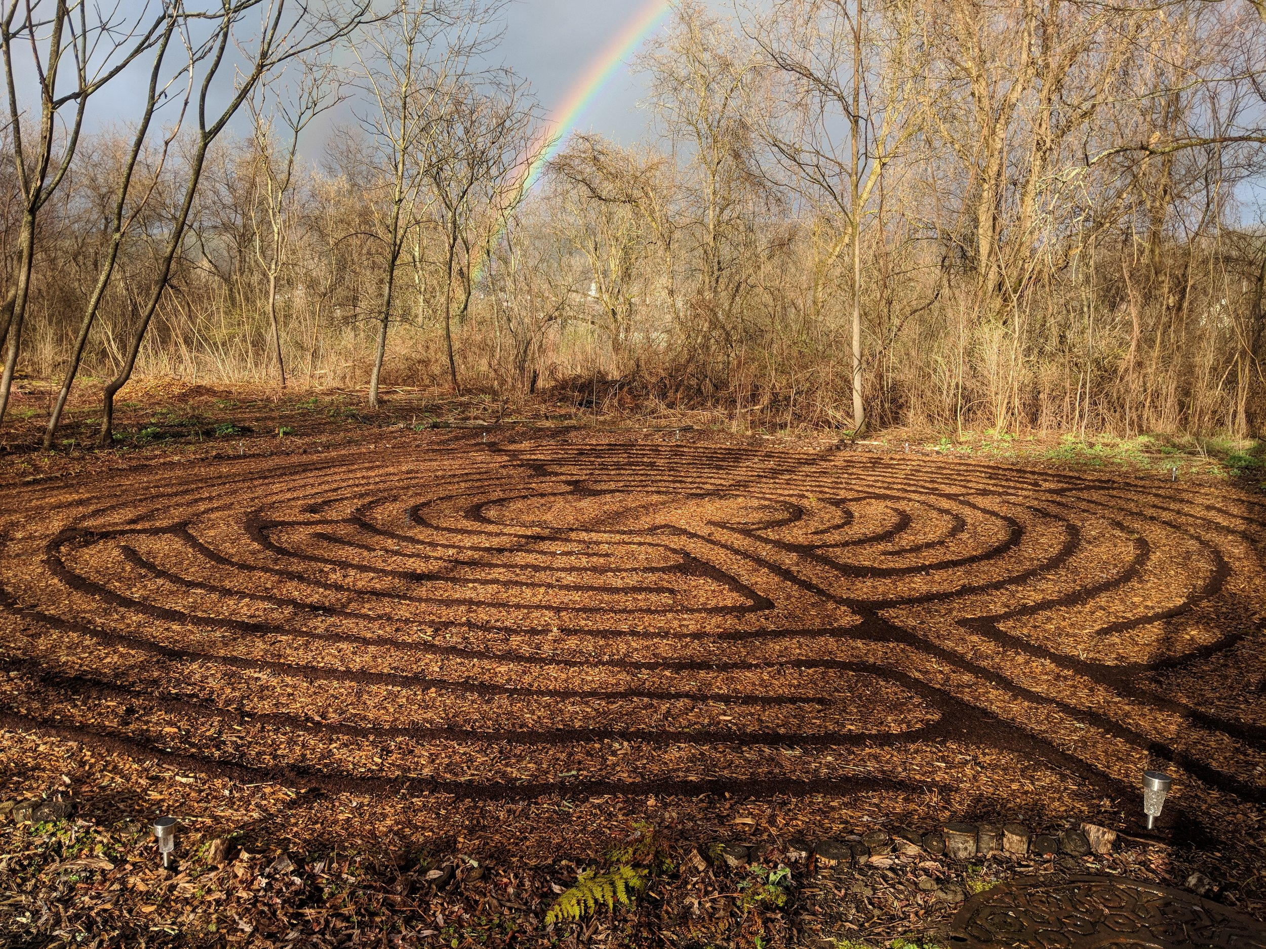 Hazelwood Forest Labyrinth in spring