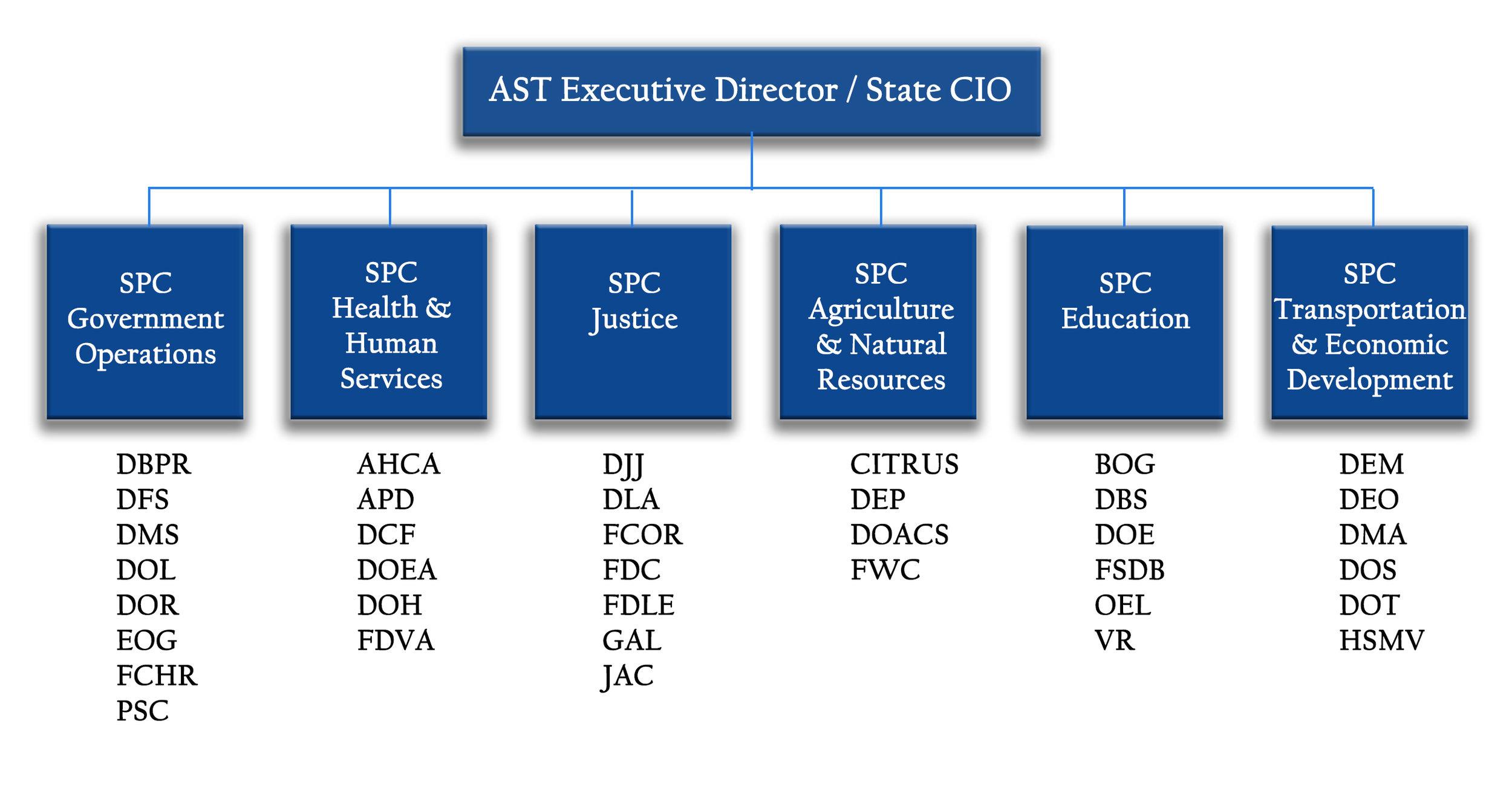 AST Strategic Planning Coordinators - roles and agencies served.