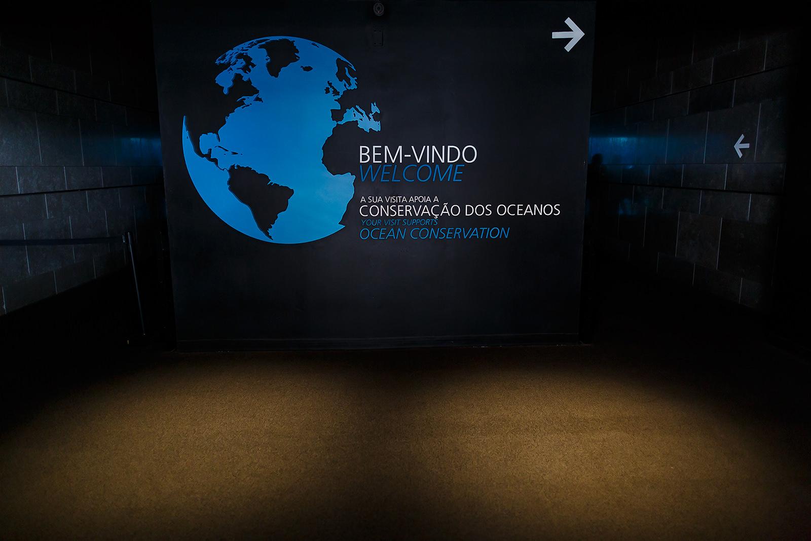 Oceanário de Lisboa, actividades do serviço educativo