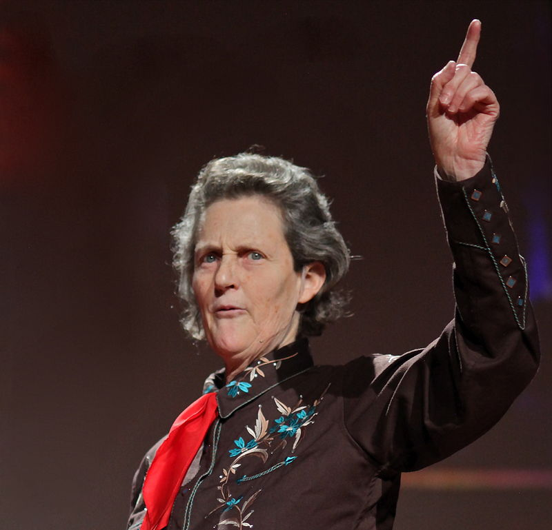 Temple Grandin, zoologist and American ethologist, is a reference in the autistic community. The diagnosis of autism when she was a girl has not prevented her from living a full life, in which she has always defended that our world needs all kinds of minds, with a different genetics, and that the autistic mind is not less than the others, but simply different.   photo by Jurvetson (   flickr   )