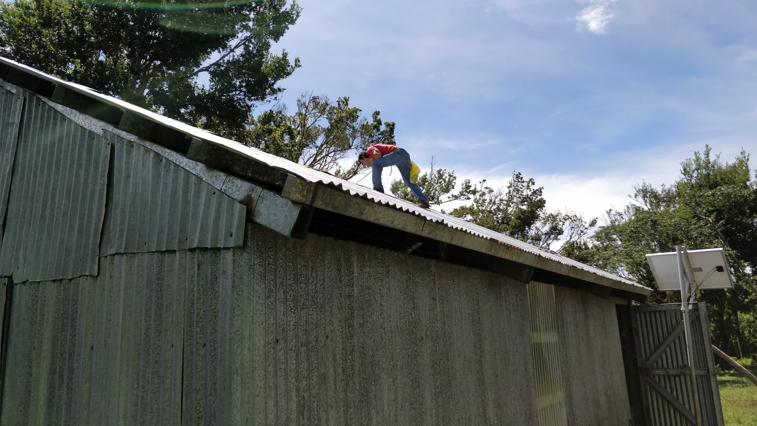 Repairs to the roof and other parts of the building of more than 10 yrs old.