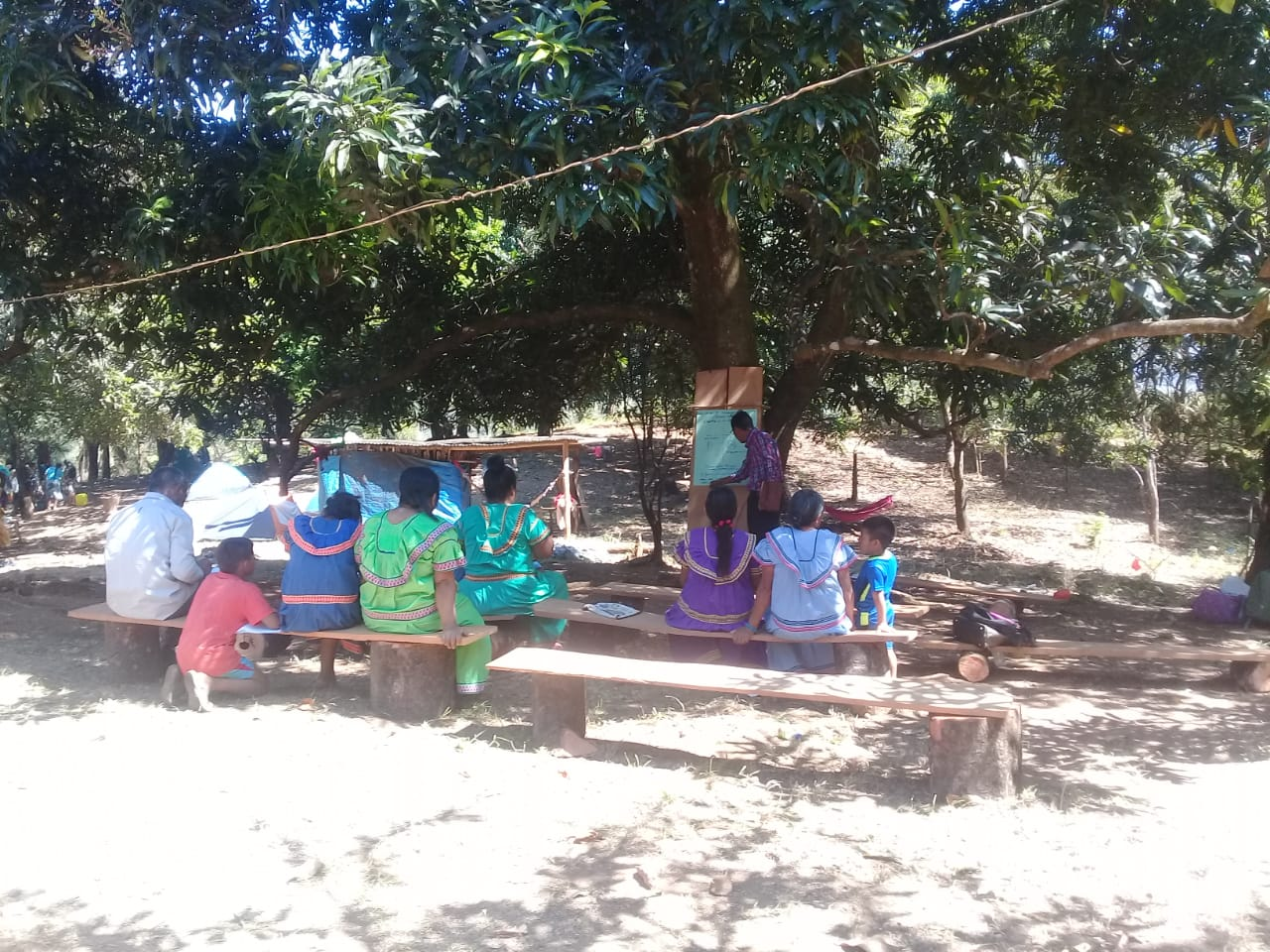 Training under a tree