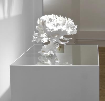 Annie Cattrell, Pleasure-Pain, rapid prototyped SLS, collaboration with Prof Morten L Kringelbach