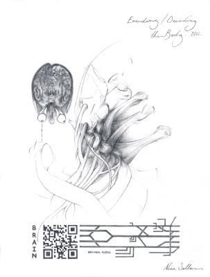 Nina Sellars, Encoding-Decoding the Body, Graphite on Paper, 2012