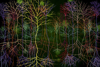 andrew_carnie_magic_forest_detail_15_2002.jpg