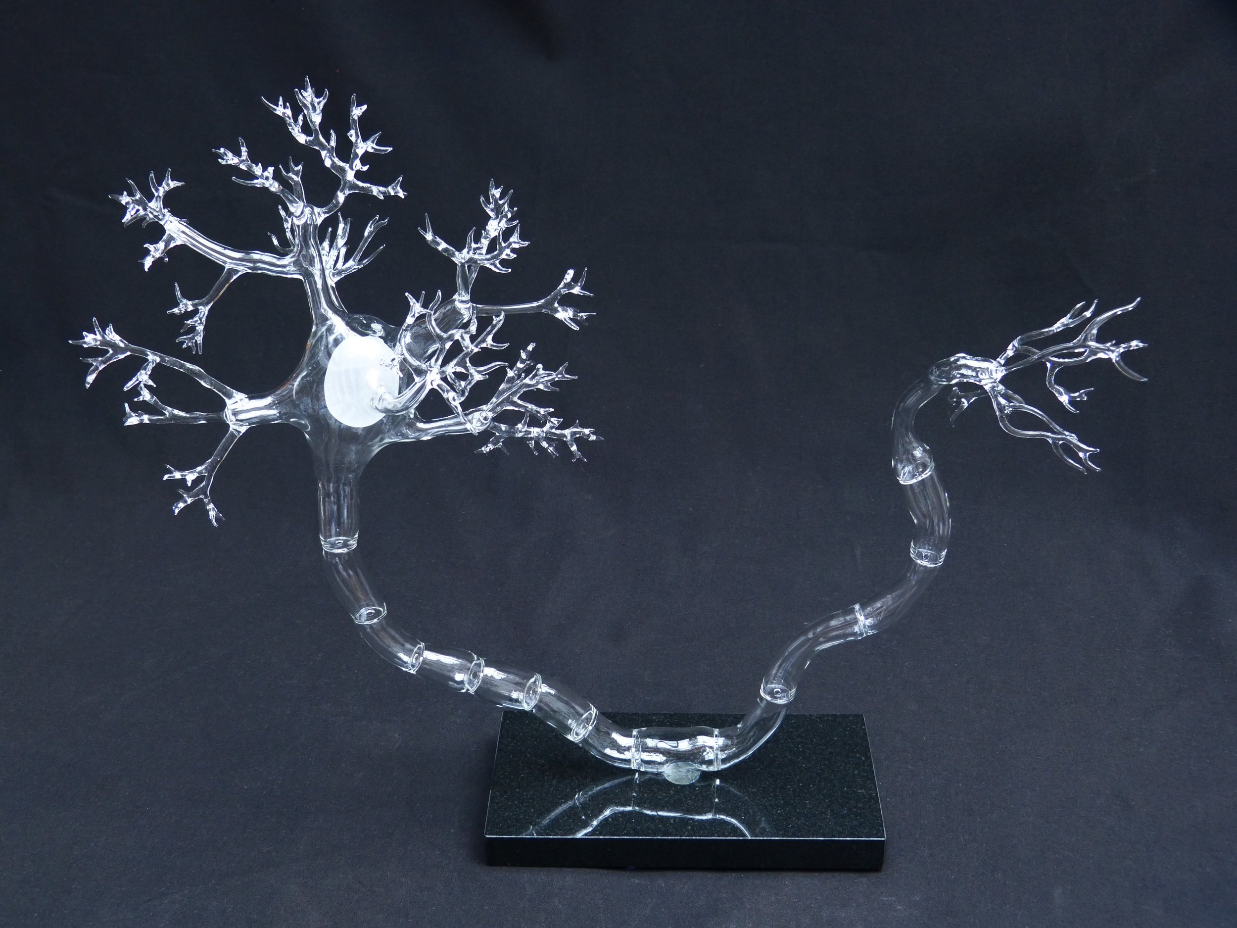 Katharine Dowson Synapse 2013