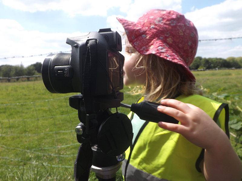 Using the digital camera to explore perspective in photography around the farm