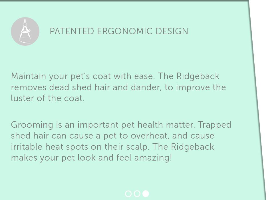 Pet-Needs-Ridgeback-6L.jpg