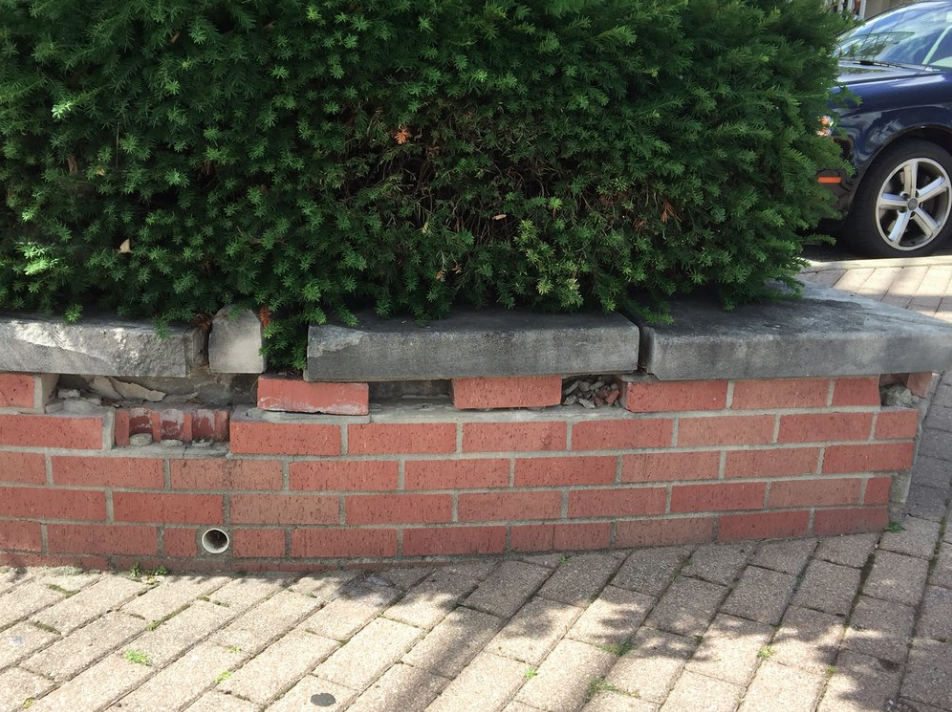 Loop Intersection - The shrubbery display in front of Migo restaurant needs regular trimming. The shrubs are contained in a knee-high brick circle that is in need of minor repair. We're looking for someone who's handy with bricks and mortar. BNA covers the cost of repair.