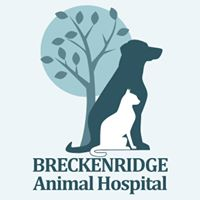 Breckinridge Animal Hospital