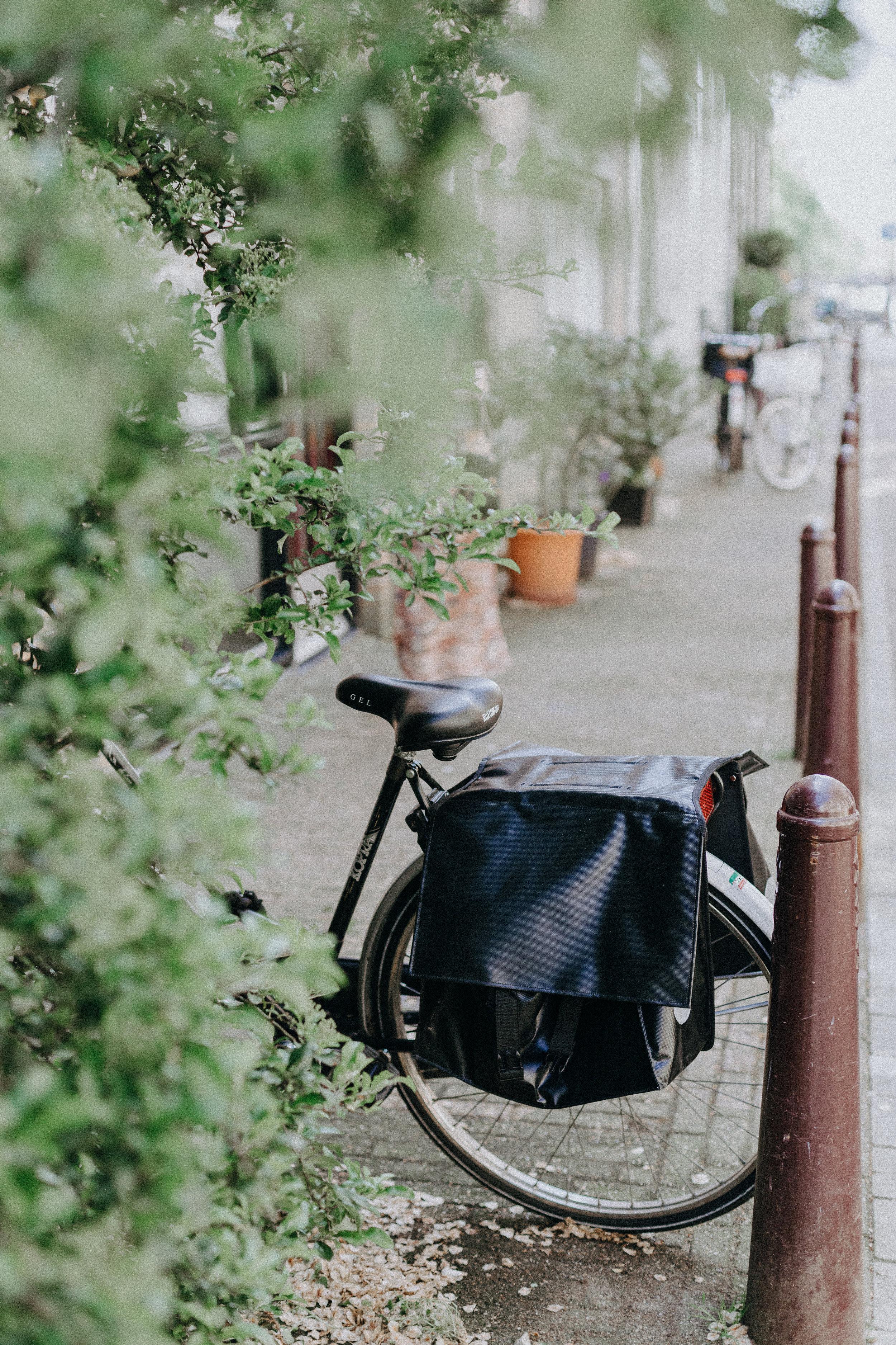 Bikes_01.jpg