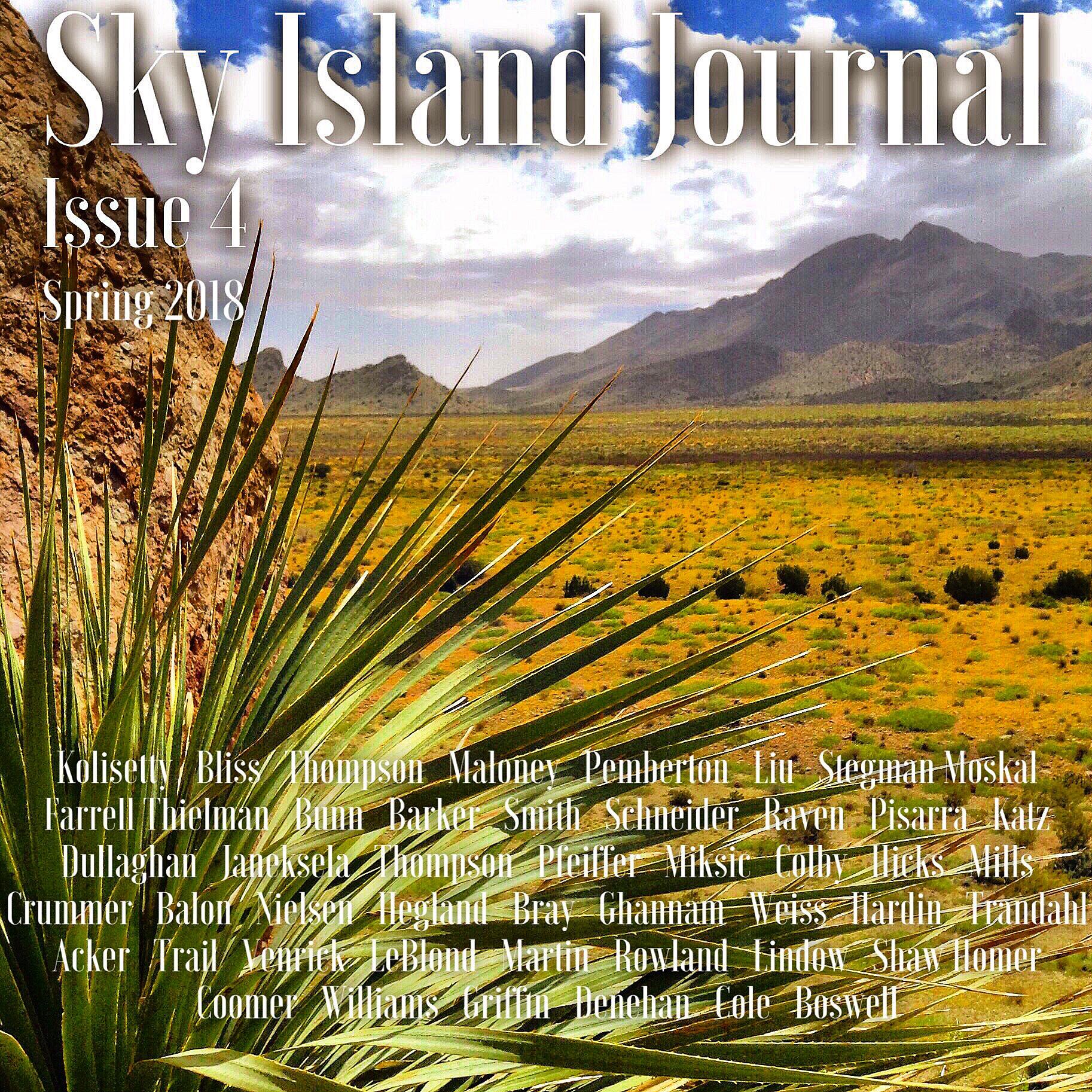 Sky Island Journal_Issue 4.jpeg