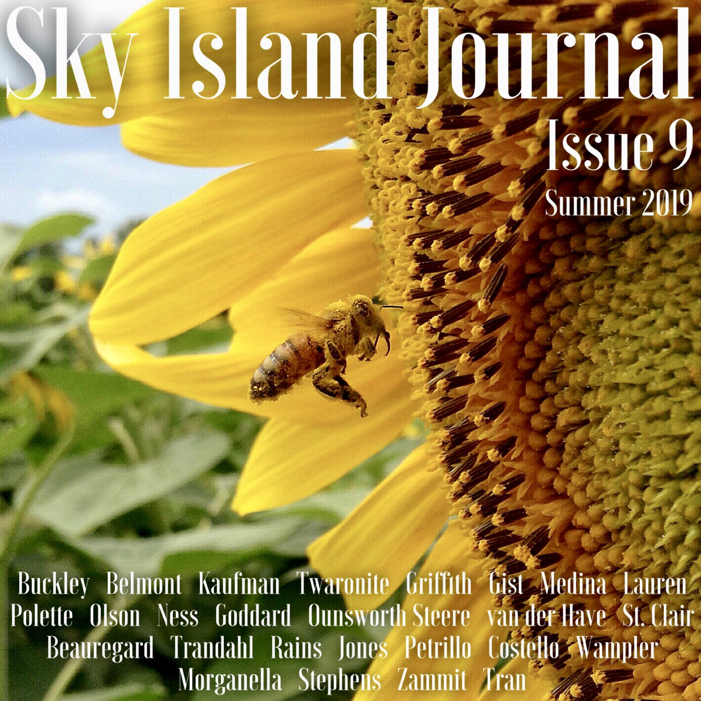 Sky Island Journal_Cover_Issue 9.jpeg