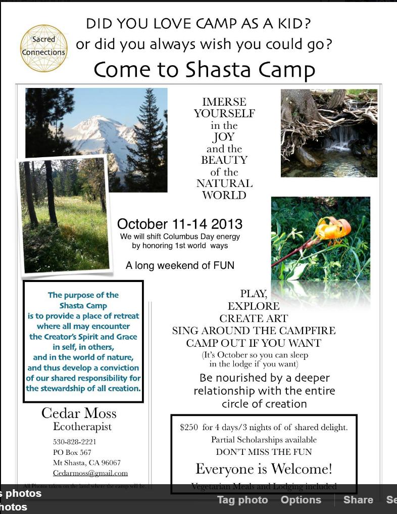 UMSC Poster summer camp.PNG